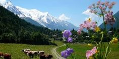 Stunning beauty of the nature beside the Alps- Alon Solomon