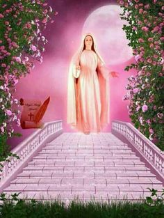Blessed Mother Mary, Blessed Virgin Mary, Fragrant Roses, Images Of Mary, Queen Of Heaven, Jesus Face, Mary And Jesus, Coming Up Roses, Holy Mary