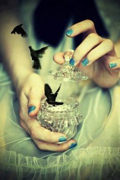 you must let the birds go - writing inspiration Fantasy Inspiration, Story Inspiration, Writing Inspiration, Character Inspiration, Writing Ideas, Story Ideas, Creative Writing Prompts, Book Prompts, Story Prompts