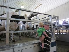 Hastings Dairy Farm Special Events--guided tours, hayrides, outdoor farm-themed playground