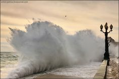 Beginning of the storm, Yalta | Yalta, Crimea, winter, landscape, storm, wave, sea, lanterns, bird, sea-front by Anton Petrus