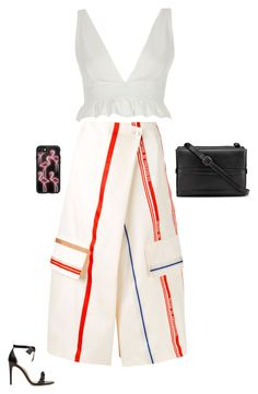 """Total cost :$2,522"" by laylahnisoutfits ❤ liked on Polyvore featuring Ports 1961, River Island, Casetify, Alexandre Birman and Christian Louboutin"