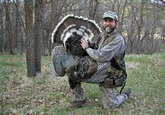 Author's note: Will Primos of Jackson, Mississippi, the founder of Primos Hunting, is a Mossy Oak Pro. I've hunted a lot of tough turkeys in my life, but none were tougher than Old Mossy. Old Mossy lived on a hill covered with Spanish moss in Copiah County, Mississippi. I was hunting with the late Woodrow Dixon on the [...]