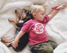 Buenas noches !!!   #PetsWorldMagazine #RevistaDeMascotas #Panama #BuenasNoches #HastaMañana #MascotasPty #MascotasAdorables #Perros #PerrosPty #perrospanama #Pets #PetsLovers #dogs #DogLovers  #PicOfTheDay #Cute #SuperTiernos
