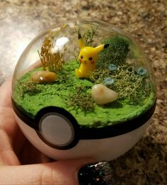 Hey, I found this really awesome Etsy listing at https://www.etsy.com/listing/475845574/pokerarium-pokemon-terrarium-custom