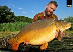 Cod rosu la crap pe lacul Harsany