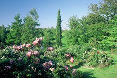 giardini-landr_-_1-x-sito.jpg 368×246 pixel