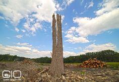 Landschaftsfotografie in Raderbroich mit Ultraweitwinkel - GioPix Fotografie und Video Blog http://www.giovanni-malfitano.de/2015/07/07/mit-dem-neuen-ultraweitwinkel-auf-den-feldern-von-raderbroich/