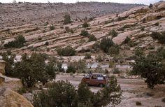 Bei den Felsbildern von El Ghicha in der algerischen Sahara. Movie Info, Find Picture, Den, Dc Comics, Africa, Marvel, Places, Pictures, Travel Report