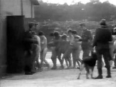 sobibor-vi naar de gaskamers
