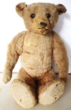 English Bear