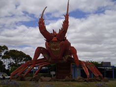 One of Australia's Big Things, check out the Big Lobster in Kingston, South Australia