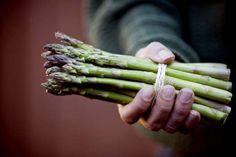 A known aphrodisiac, asparagus contains folic acid, potassium and vitamin E, which are all essential... - I Love Images/Corbis