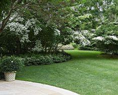 Land Wallpapers ☘︎ Rock Garden Plants, Shade Garden, Garden Paths, Cool Landscapes, Beautiful Landscapes, Beautiful Gardens, Short Plants, Tall Plants, Garden Landscape Design