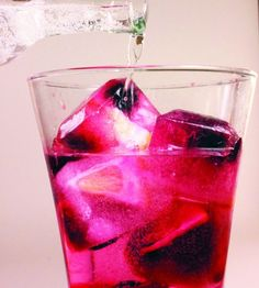 Lemon and Berry Medley Ice Cubes