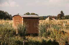 5 der schönsten Hofläden im Rhein-Main-Gebiet - Rhein-Main-Blog Maine, Rhein Main Gebiet, Shed, Outdoor Structures, House Styles, Blog, Home Decor, Inspiration, Farm Shop