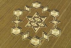 crop circles 2016 - Google zoeken