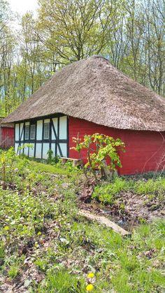 Stråtækthus i skoven. Thatched roof house in the forest. — in Boller, Vejle, Denmark.
