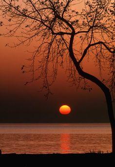 ✯ Orange Sun