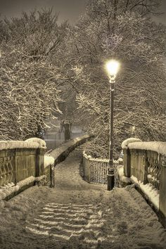 A Winter Wonderland // by Mark Carline, via Flickr.