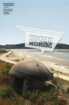 Concrete Mushrooms - Elian Stefa & Gyler Mydyti - Google Books