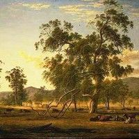 protrayal of australian landscape and character The drover's wife embodies the spirit that is deeply universal and eternal in humans this is the flip side of the garden of eden instead of the tree of knowledge with its forbidden fruit, we have stunted apple trees with a snake.