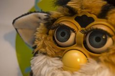 Furbie--the most annoying toy ever.