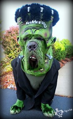 frankenstein dog costume. I cant even handle it! !