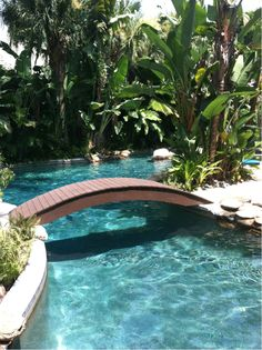 Walking bridge over a freeform pool -