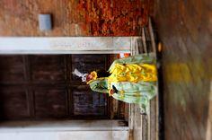 Magic in Venice # dress up # mask # Venice mask