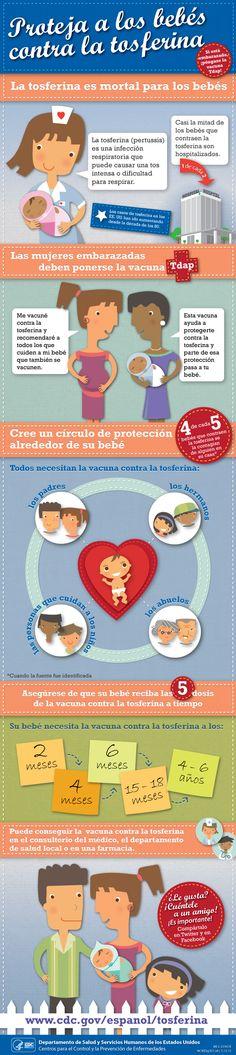 CDC - Proteja a los bebés contra la tosferina - infographic - Vacunas