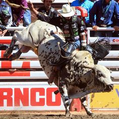 Welcome to the official website of the Professional Bull Riders, your No. 1 source for PBR news, results, videos and more. Rodeo Cowboys, Hot Cowboys, Real Cowboys, Rodeo Events, Professional Bull Riders, Bucking Bulls, Rodeo Life, Rough Riders, Bull Riding