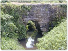 熊本県の石橋中でも特異な形状をした石橋です。石橋の殆どはアーチ式の石橋です。まれに石桁式の石橋が数基あるくらいです(天草市の祗園橋・人吉市の御門橋・清爽園橋・水前寺公園の石桁の橋、他に数基神社にあるもの) 市木橋はこの石桁の橋とも違う迫出し式の石橋です。菊池市の立門橋の手...