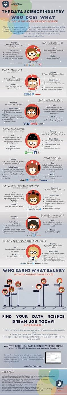 Career Management - Who Does What in the Data Science Industry [Infographic] : MarketingProfs Article