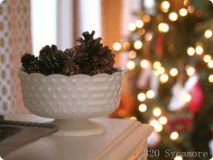 love compotes & pine cones