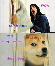 the shining doge edition