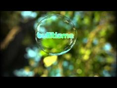 Bubble of Love  -  Bullitisme aka lieven pauwels