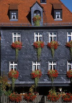 Germany - the Germans love their window boxes. They have the most beautiful flowers. Most often, they are geraniums. all my life i grew up with geraniums now i know why Window Box Flowers, Window Boxes, Flower Boxes, Window Planters, Hanging Flowers, Garden Windows, Most Beautiful Flowers, Window Dressings, Windows And Doors