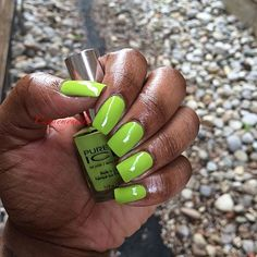 """Almost dared the right five Ready to get live, ain't no surprise Take me so high, jump and don't stop"" @officialpureice  #pureicenails #pureicenailpolish #wildthing #neon #nailpro #artist #polish #fcnails #fashion #gelnails #girly #wakeupandmakeup #tumblrnailsxo #toronto #thenailartstory #torontohenna #mehndi #dressyourface #inked #instadaily #instagood #unhas #nailgame #nail #nailpolishaddict #nailpolish #bossnail #dopenails #nailartclub #green"