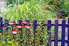 "Blue picket fence. (In one of the photos showing Gardener's Supply Co.'s decorative ""poppy"" stakes.)"