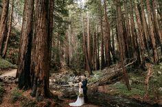 Kaitlyn and Matt Intimate Big Sur Wedding by Paige Nelson Photography Big Sur Wedding, Small Intimate Wedding, Intimate Weddings, Dream Wedding, Small Weddings, Unique Weddings, Enchanted Bridal, Enchanted Forest Wedding, Redwood Forest Wedding