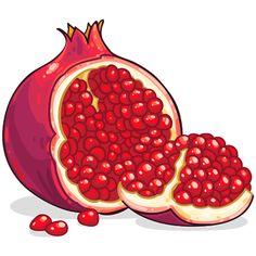 pomegranate clipart - Buscar con Google