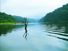 A view of the beautiful Periyar Lake in the Periyar Tiger Reserve