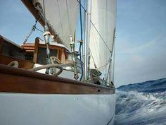 Ave Maria, classic sailing trip from Cartagena, Colombia to Panama via the San Blas Islands or visa versa.  www.avemariasailing.com