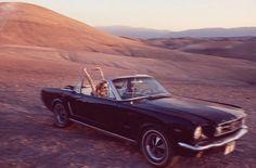 Drive through the desert