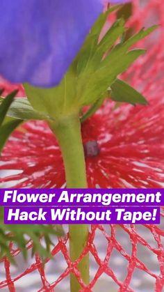 Amazing Life Hacks, Simple Life Hacks, Useful Life Hacks, Diy Crafts Hacks, Diy Home Crafts, Floral Arrangements, Flower Arrangement, Everyday Hacks, Do It Yourself Home