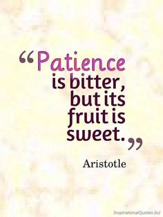 Patience is bitter, but it's fruit is sweet. - Aristotle