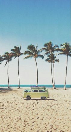 VW bus on the beach with tall palmtrees