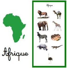 Les animaux des continents carte autocorrection