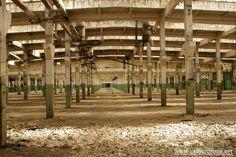 ursus factory. warsaw, poland.